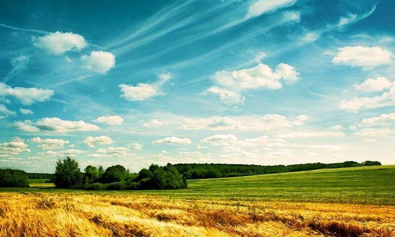 קרקע חקלאית תמונה